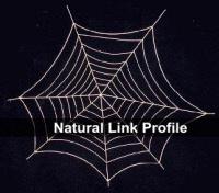 Natrual Link Profile - SEO Notebook