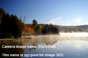 Image SEO Example