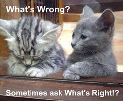 Blogging - Ask What's Right