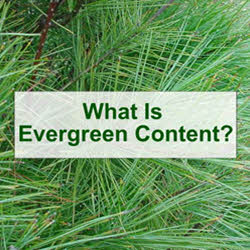 Evergreen Content - What is Evergreen Content