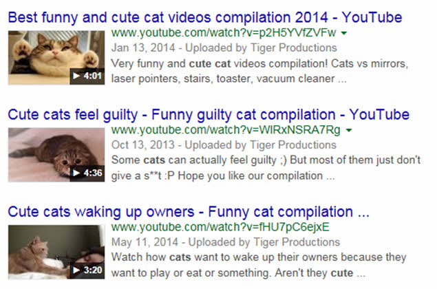 Video SEO - Cute Cats Example