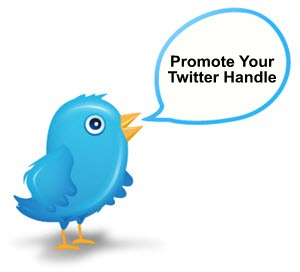 Twitter-Tips - Promote Your Twitter ID-300