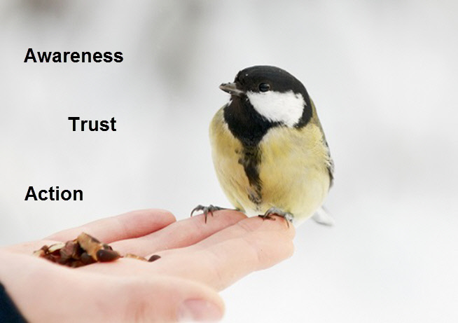 Real Estate Marketing - Awareness Trust Action